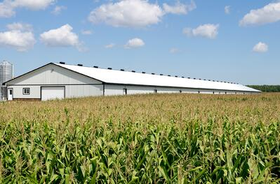 efficiency-on-the-farm.jpeg