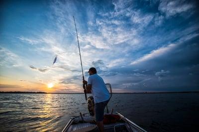 fishermans_analogy.jpeg