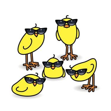 Five-Yellow-Chicks-Wearing-Ladies-Sunglasses-Staring-471042600_1735x1735